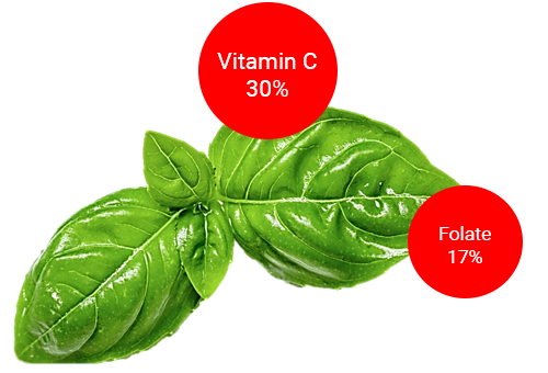 basil for immune system