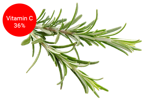 rosemary for immune system