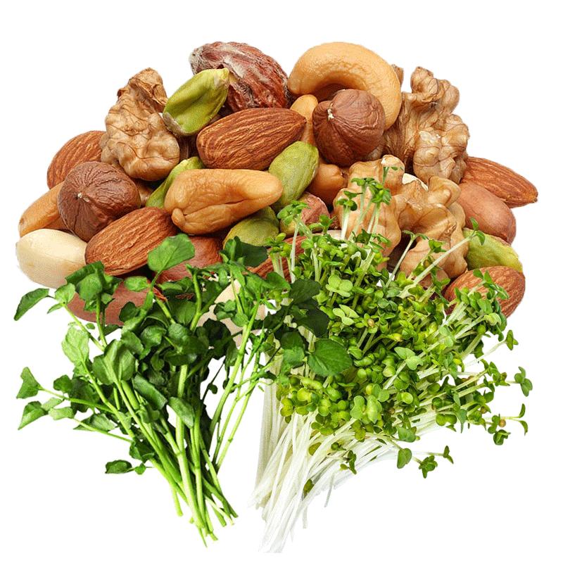 smoothie green protein